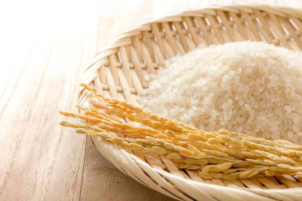 かほ市のお米