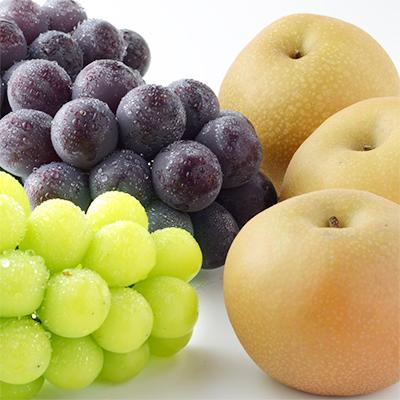 梨とぶどうの贅沢な組み合わせセット