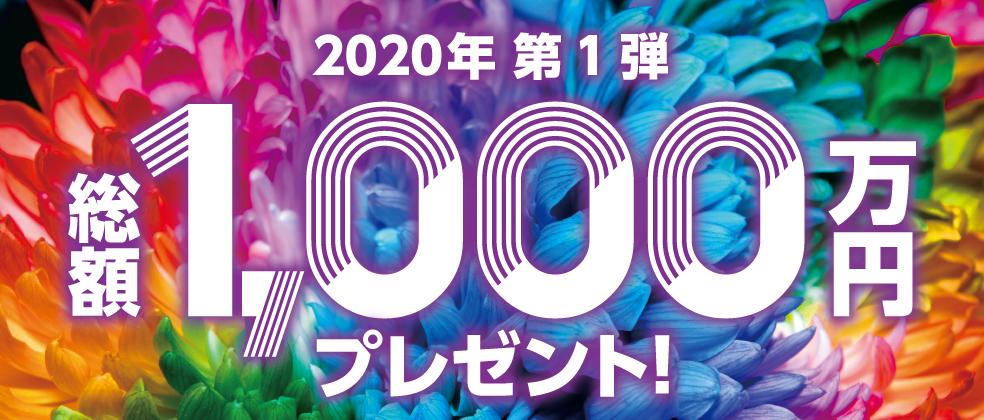 リボ・分割・スキップで総額1,000万円! 2020年 第1弾